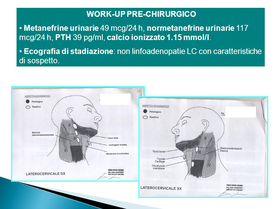 WORK-UP PRE-CHIRURGICO