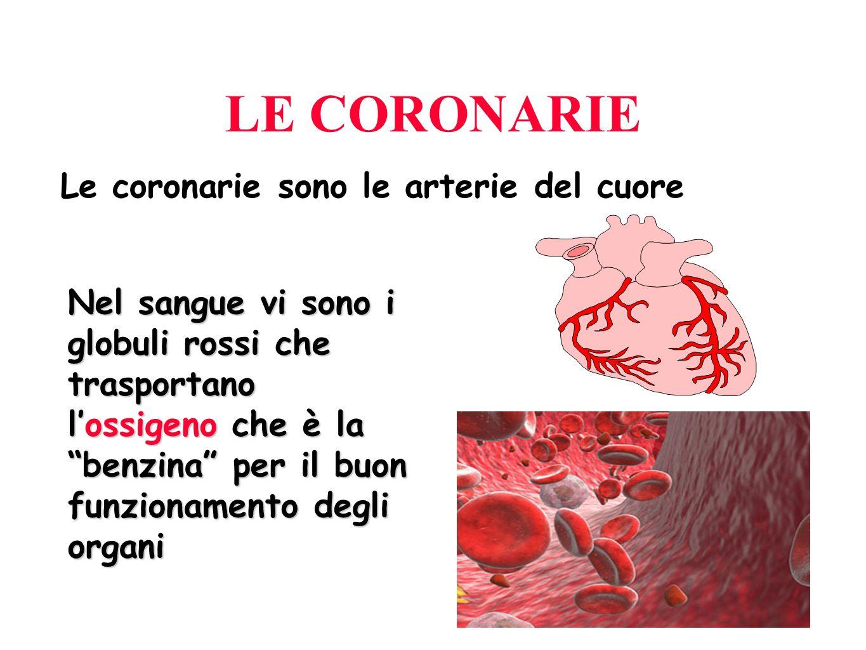 LE CORONARIE Le coronarie sono le arterie del cuore