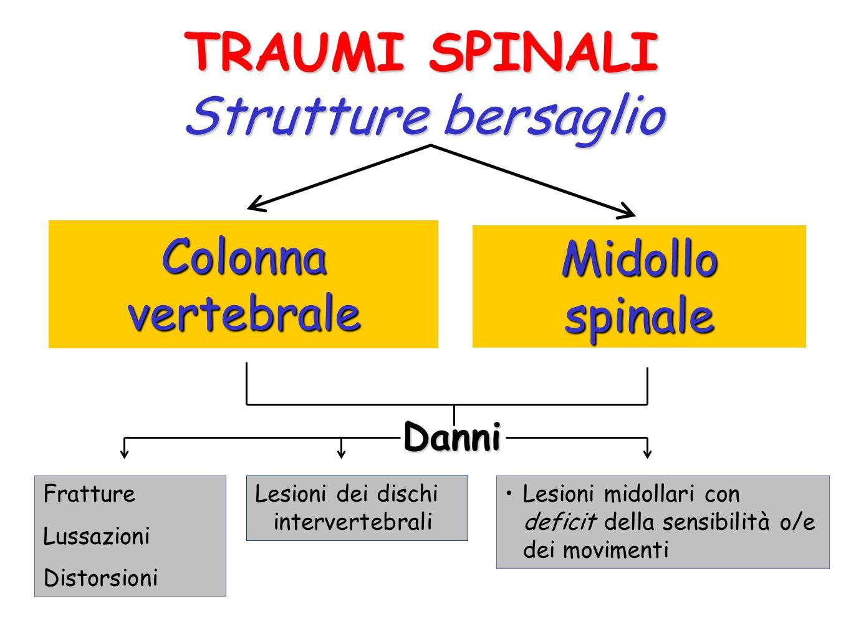 TRAUMI SPINALI Strutture bersaglio Colonna vertebrale Midollo spinale