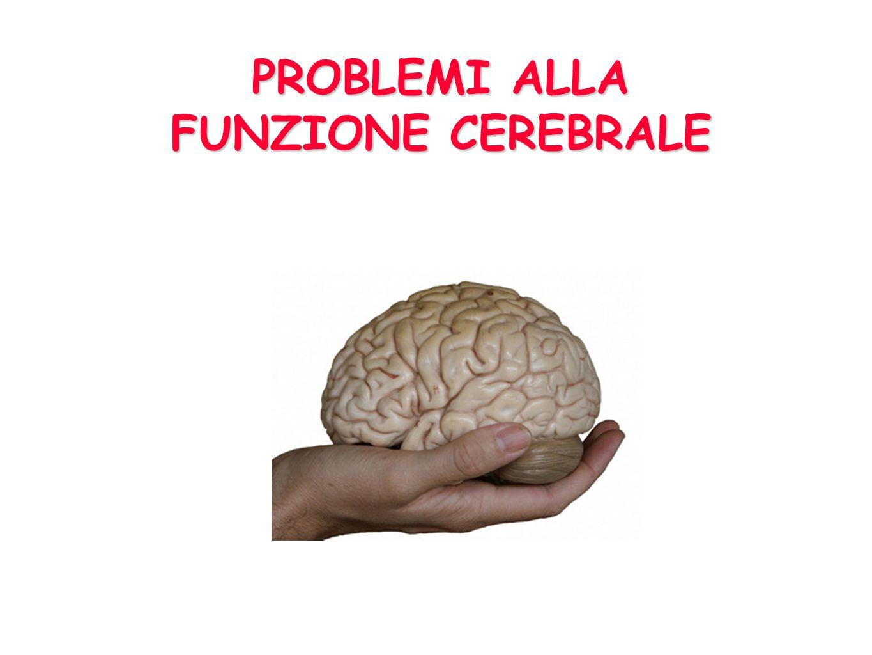 PROBLEMI ALLA FUNZIONE CEREBRALE