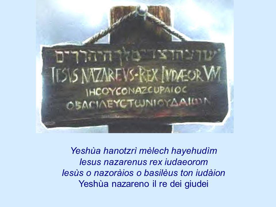 Yeshùa hanotzrì mèlech hayehudìm Iesus nazarenus rex iudaeorom