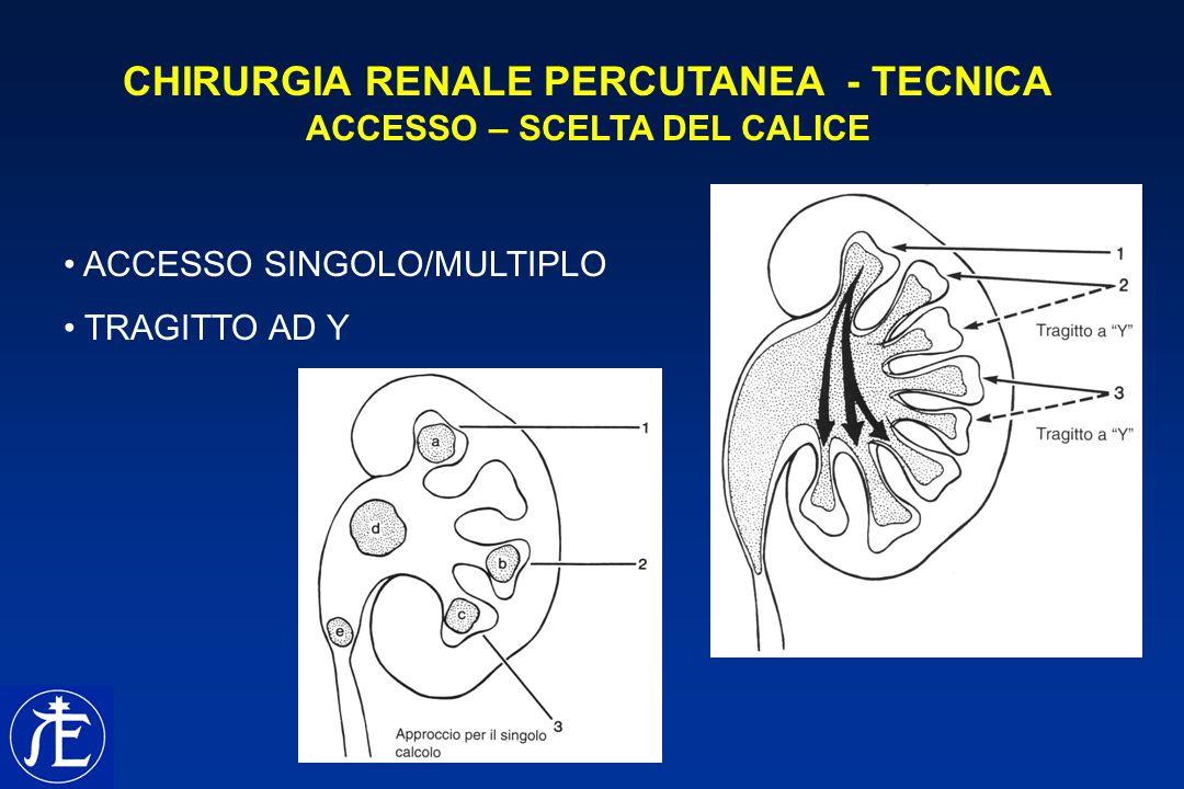 CHIRURGIA RENALE PERCUTANEA - TECNICA ACCESSO – SCELTA DEL CALICE