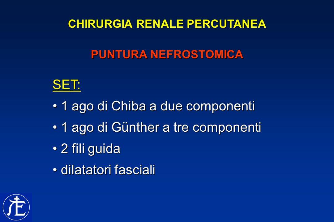 CHIRURGIA RENALE PERCUTANEA