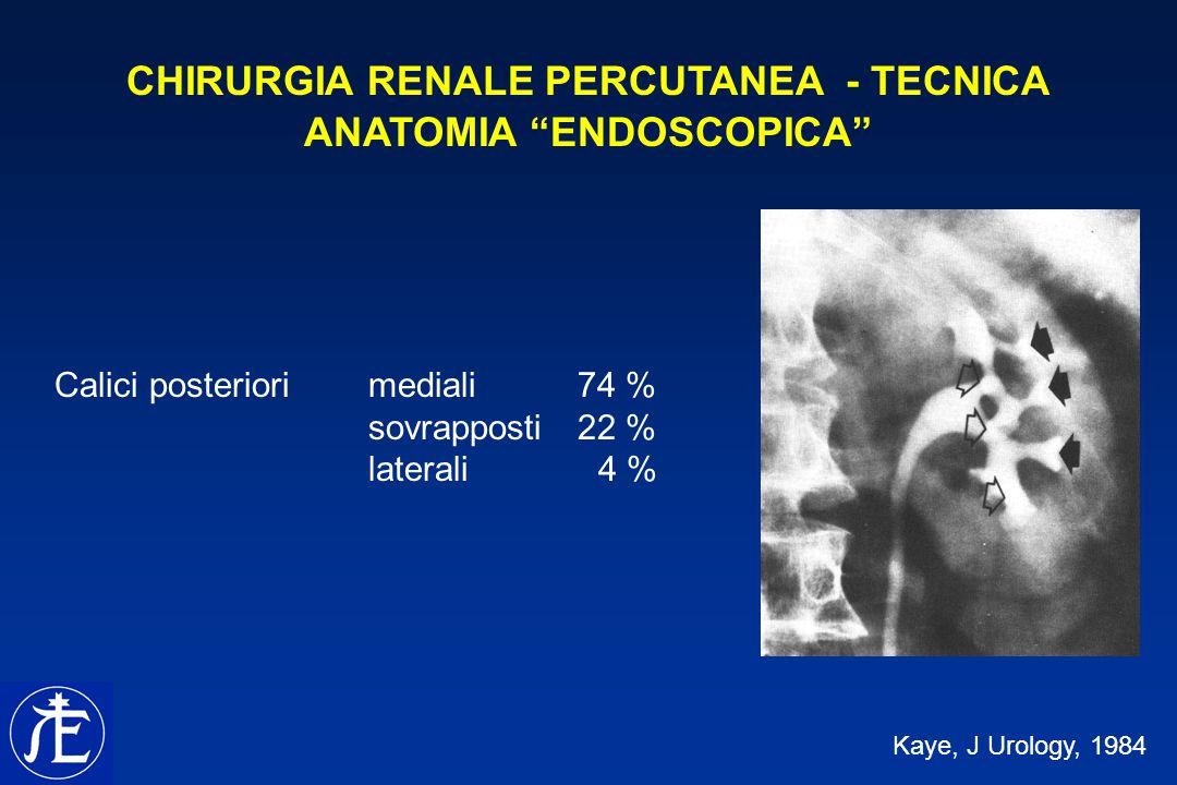 CHIRURGIA RENALE PERCUTANEA - TECNICA ANATOMIA ENDOSCOPICA