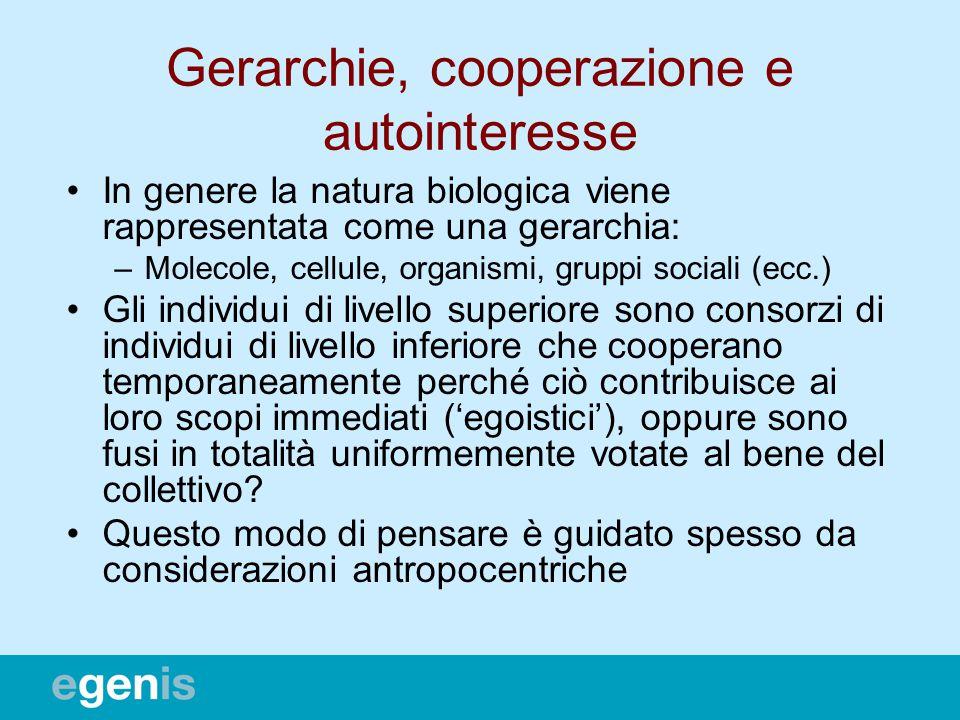 Gerarchie, cooperazione e autointeresse