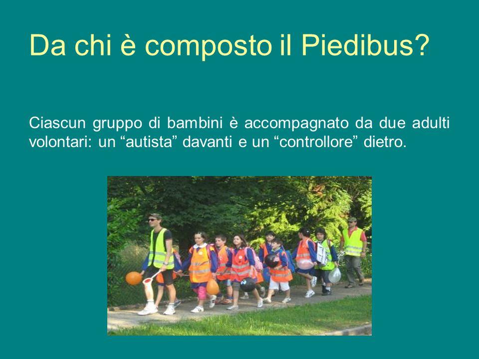 Da chi è composto il Piedibus
