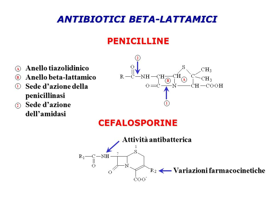 ANTIBIOTICI BETA-LATTAMICI