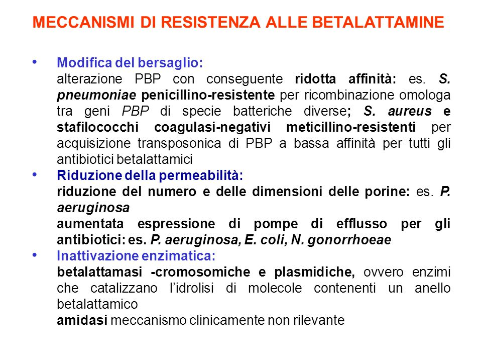 MECCANISMI DI RESISTENZA ALLE BETALATTAMINE