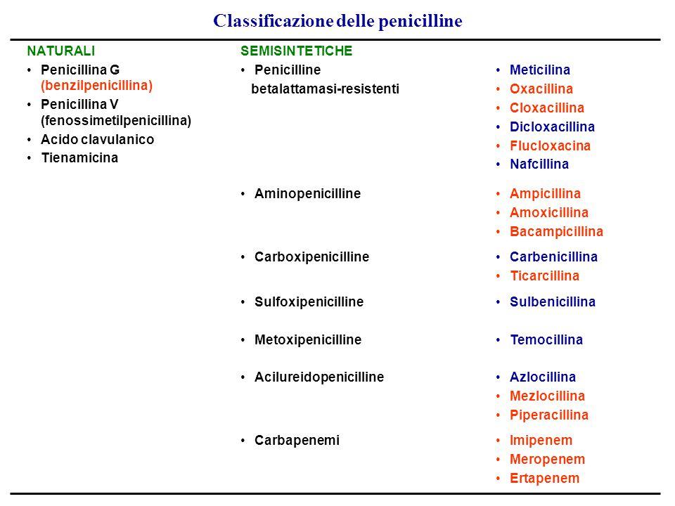 Classificazione delle penicilline