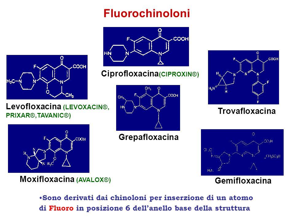 Fluorochinoloni Ciprofloxacina(CIPROXIN®) Levofloxacina (LEVOXACIN®,