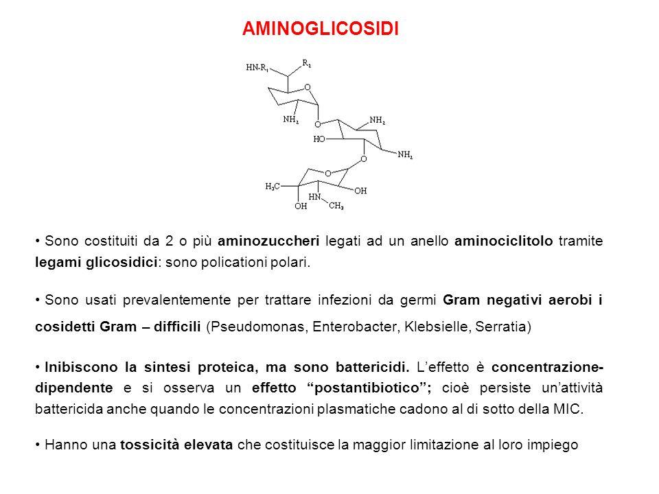 AMINOGLICOSIDI Sono costituiti da 2 o più aminozuccheri legati ad un anello aminociclitolo tramite legami glicosidici: sono policationi polari.