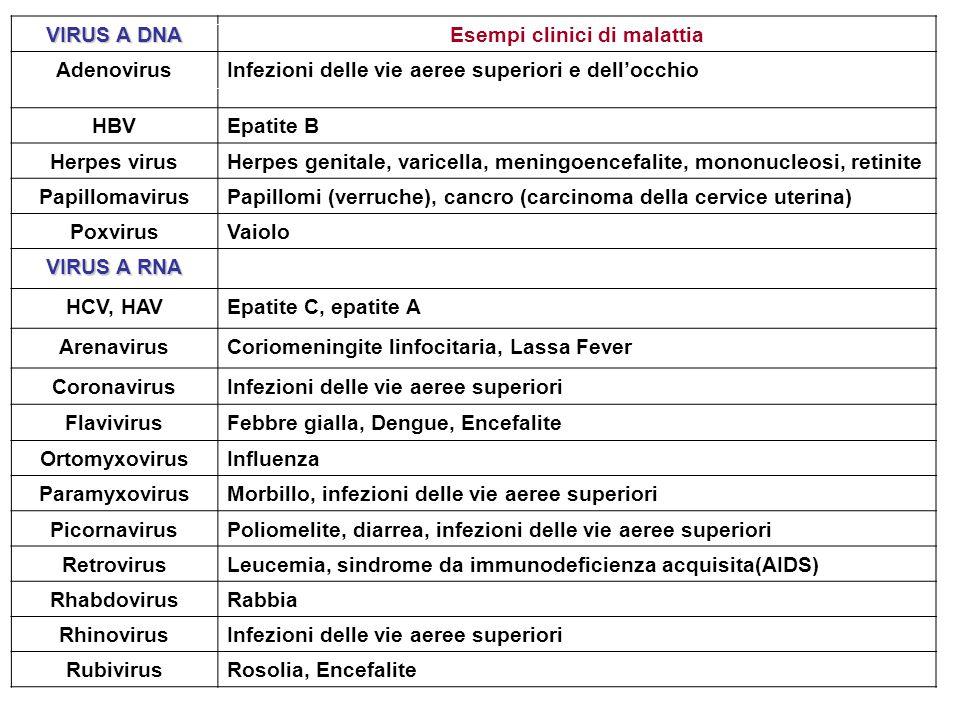 Esempi clinici di malattia