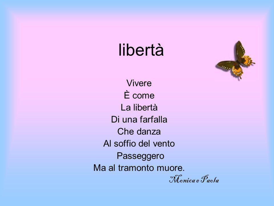 libertà Vivere È come La libertà Di una farfalla Che danza