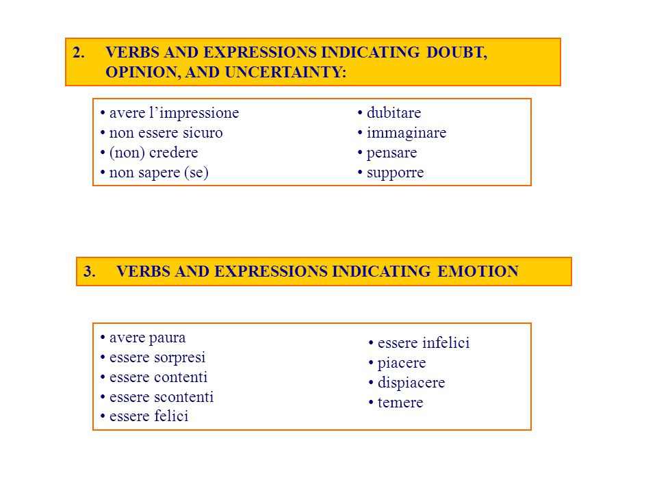 VERBS AND EXPRESSIONS INDICATING DOUBT, OPINION, AND UNCERTAINTY: