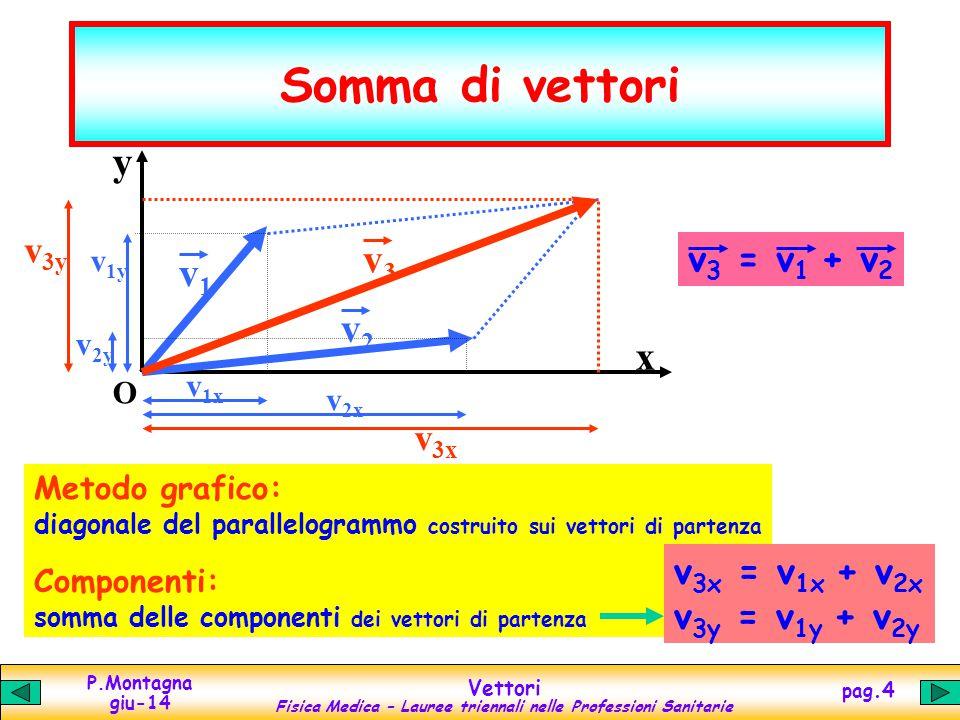 Somma di vettori y v3 v1 v2 x v3y v3 = v1 + v2 v3x v3x = v1x + v2x