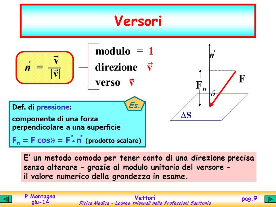 Versori modulo = 1 verso v F Fn v |v| n = direzione v n DS Es.