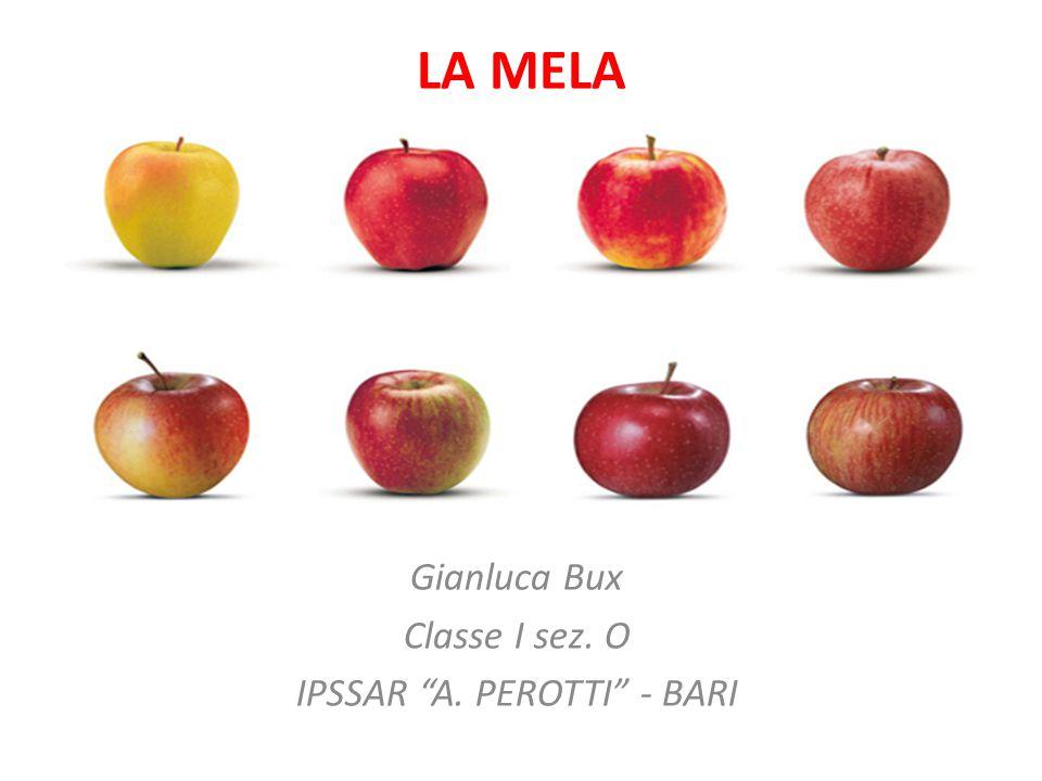 Gianluca Bux Classe I sez. O IPSSAR A. PEROTTI - BARI
