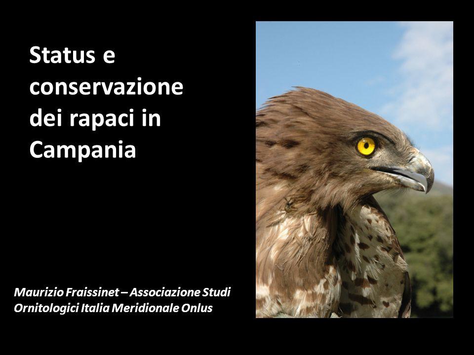 Status e conservazione dei rapaci in Campania