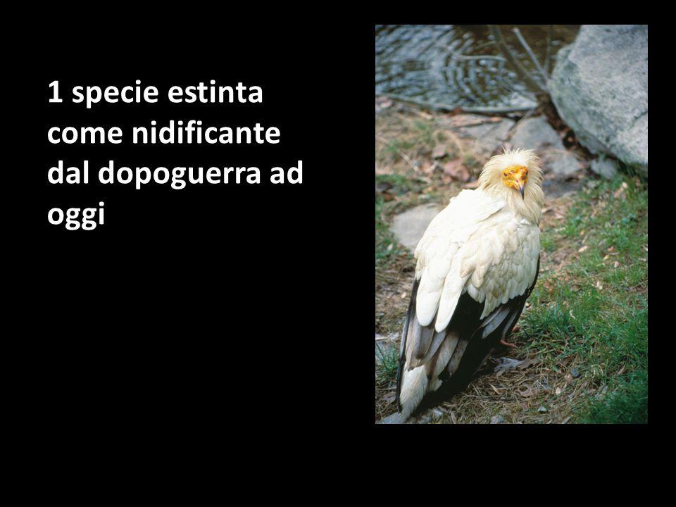 1 specie estinta come nidificante dal dopoguerra ad oggi
