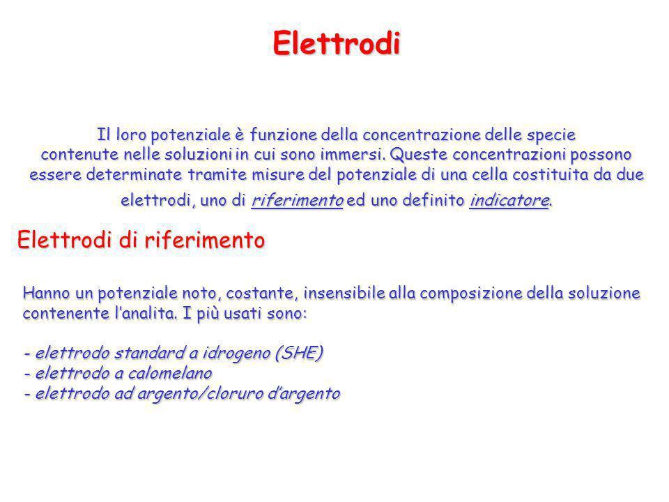 Elettrodi Elettrodi di riferimento