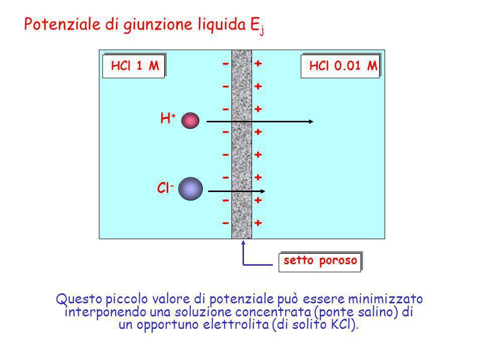 Potenziale di giunzione liquida Ej