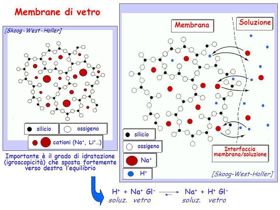 Membrane di vetro Soluzione Membrana H+ + Na+ Gl- Na+ + H+ Gl-