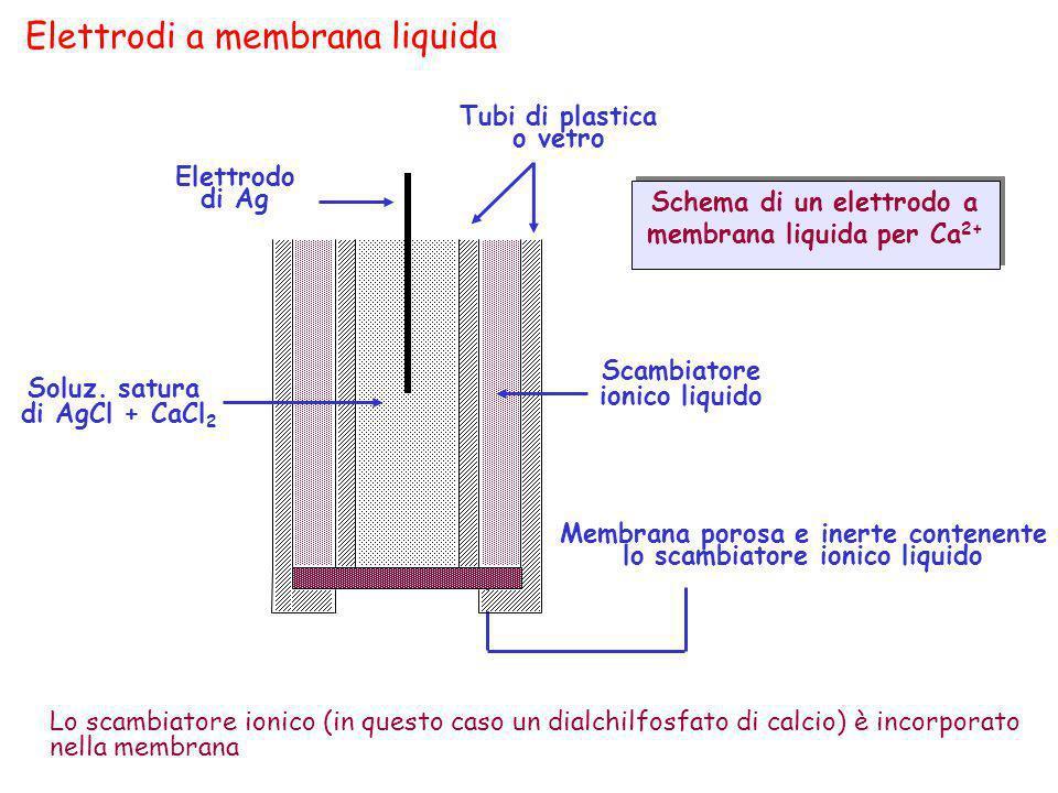 Elettrodi a membrana liquida