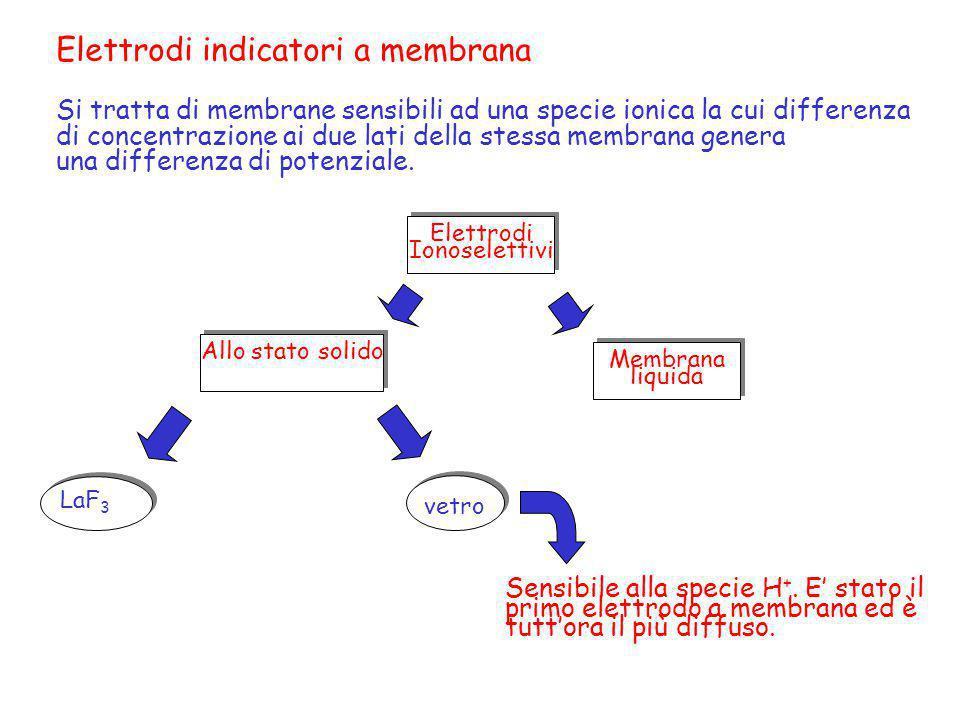 Elettrodi indicatori a membrana