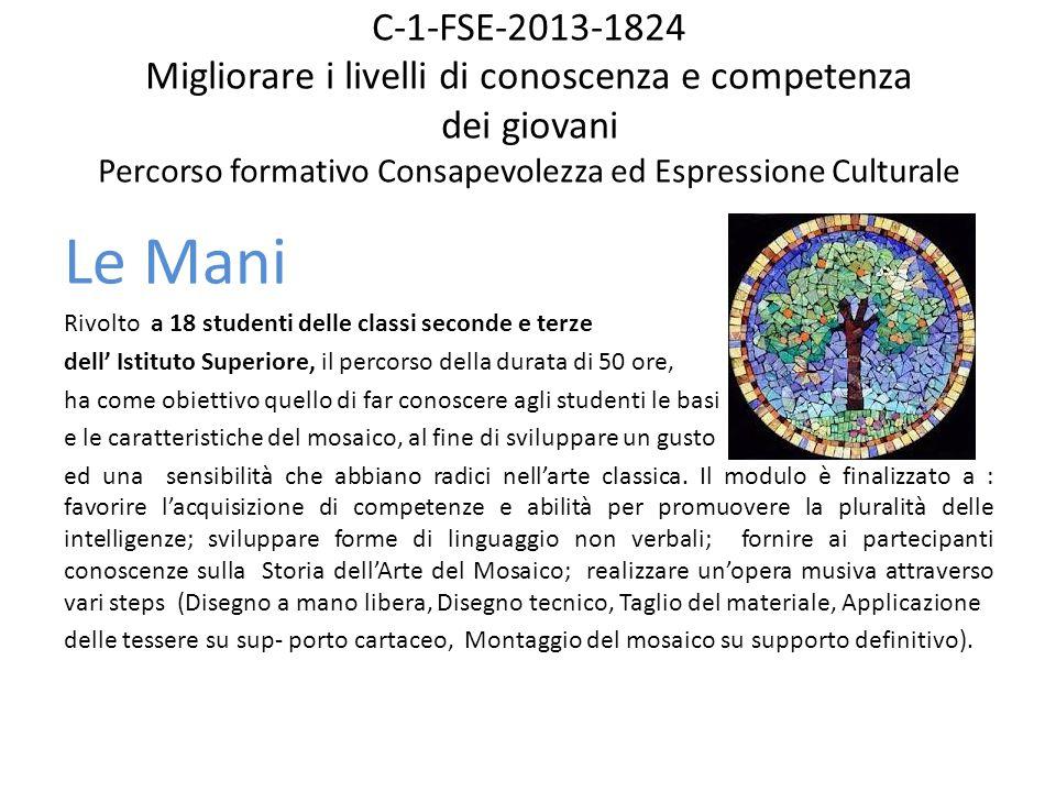C-1-FSE-2013-1824 Migliorare i livelli di conoscenza e competenza dei giovani Percorso formativo Consapevolezza ed Espressione Culturale