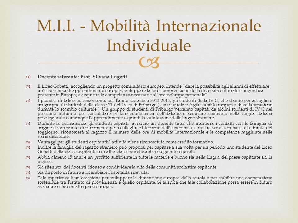 M.I.I. - Mobilità Internazionale Individuale