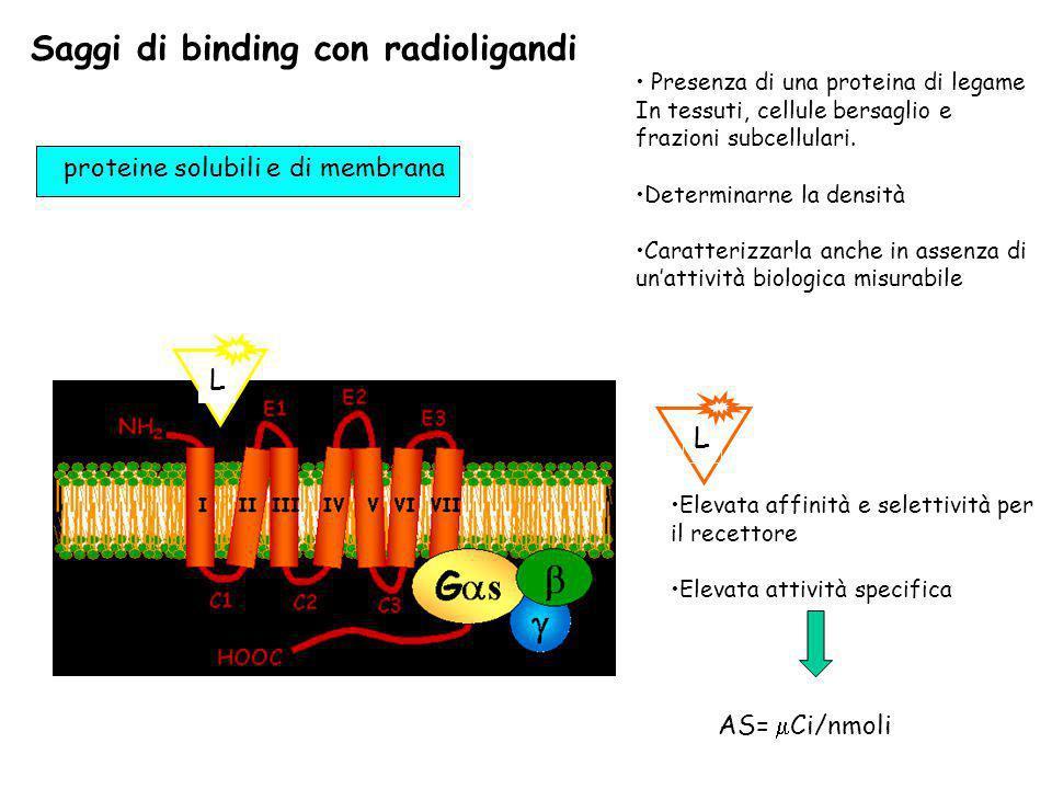 Saggi di binding con radioligandi