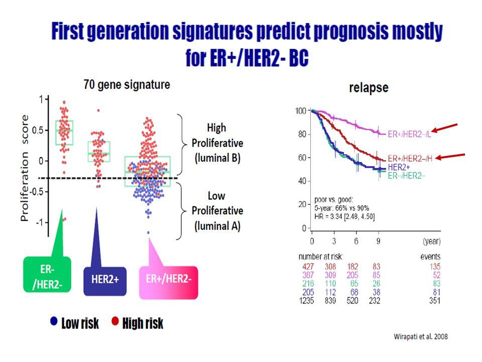 Signatures che danno informazioni prognostiche essenzialmente sulla malattia ER+/HER2-