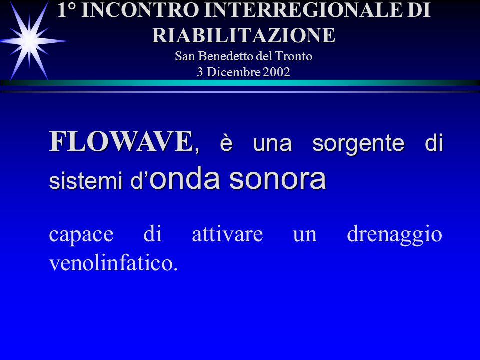 FLOWAVE, è una sorgente di sistemi d'onda sonora