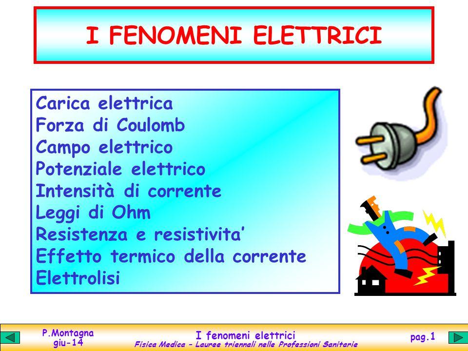 I FENOMENI ELETTRICI Carica elettrica Forza di Coulomb Campo elettrico
