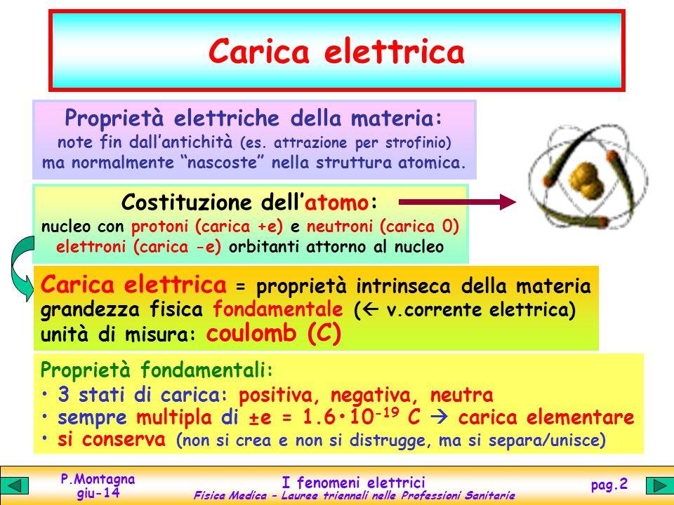 Carica elettrica Carica elettrica = proprietà intrinseca della materia