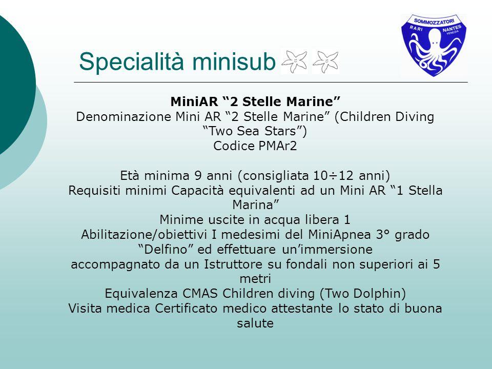 MiniAR 2 Stelle Marine