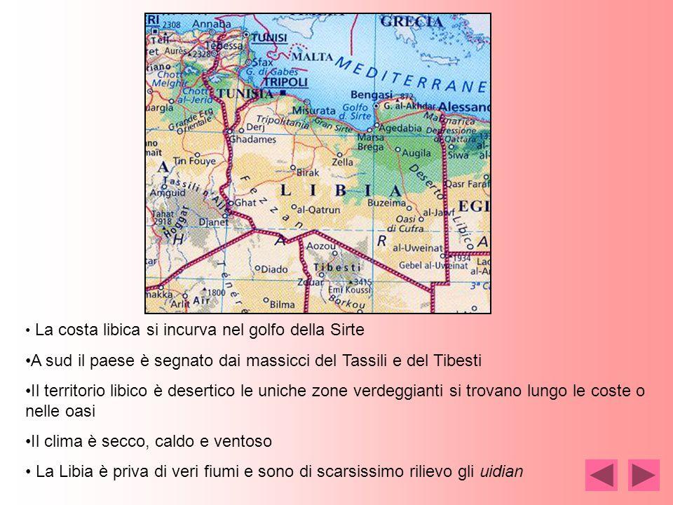 A sud il paese è segnato dai massicci del Tassili e del Tibesti