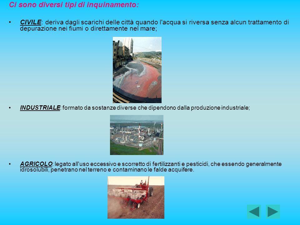 Ci sono diversi tipi di inquinamento: