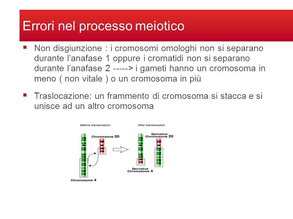 Errori nel processo meiotico