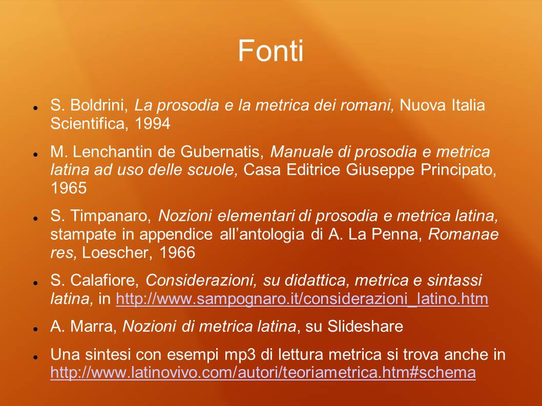 Fonti S. Boldrini, La prosodia e la metrica dei romani, Nuova Italia Scientifica, 1994.