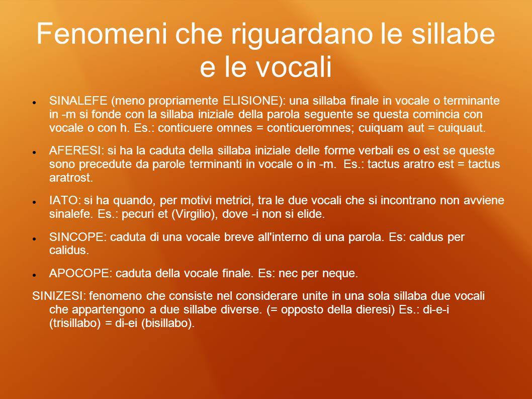 Fenomeni che riguardano le sillabe e le vocali