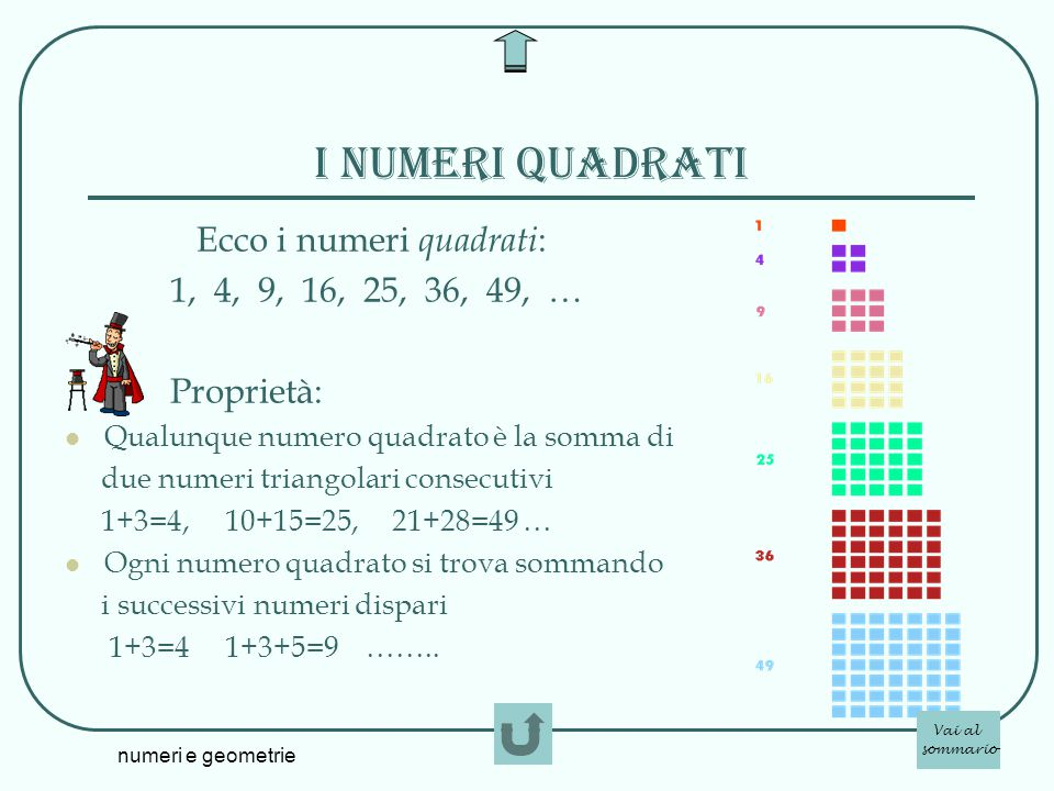 I numeri quadrati Ecco i numeri quadrati: 1, 4, 9, 16, 25, 36, 49, …