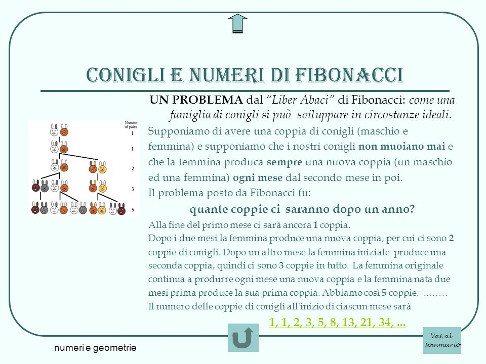 Conigli e numeri di Fibonacci