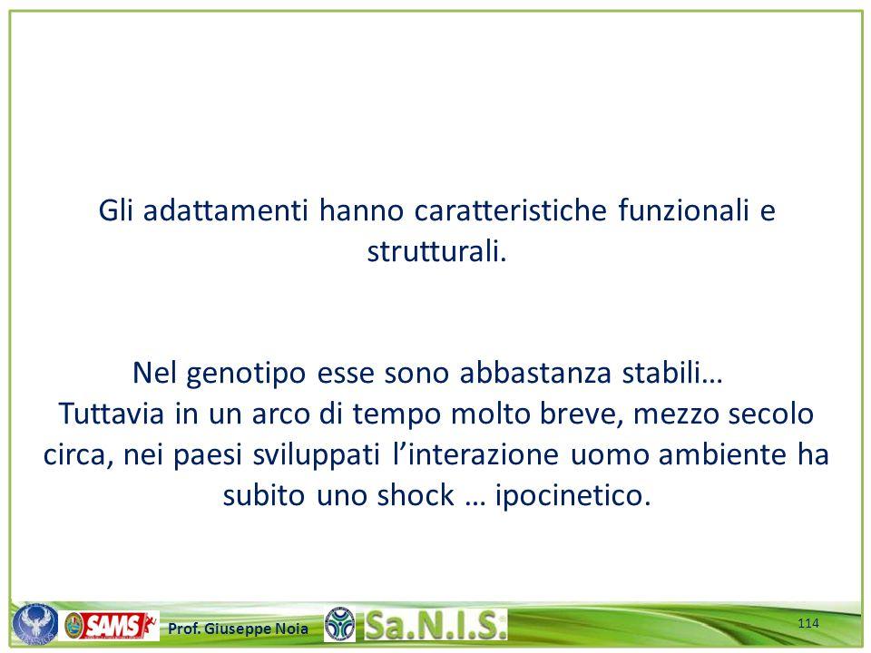 Gli adattamenti hanno caratteristiche funzionali e strutturali.