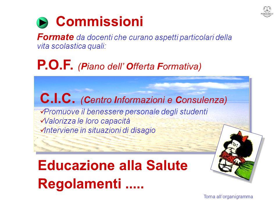 Commissioni P.O.F. (Piano dell' Offerta Formativa)