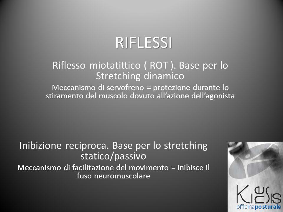 RIFLESSI Riflesso miotatittico ( ROT ). Base per lo Stretching dinamico.