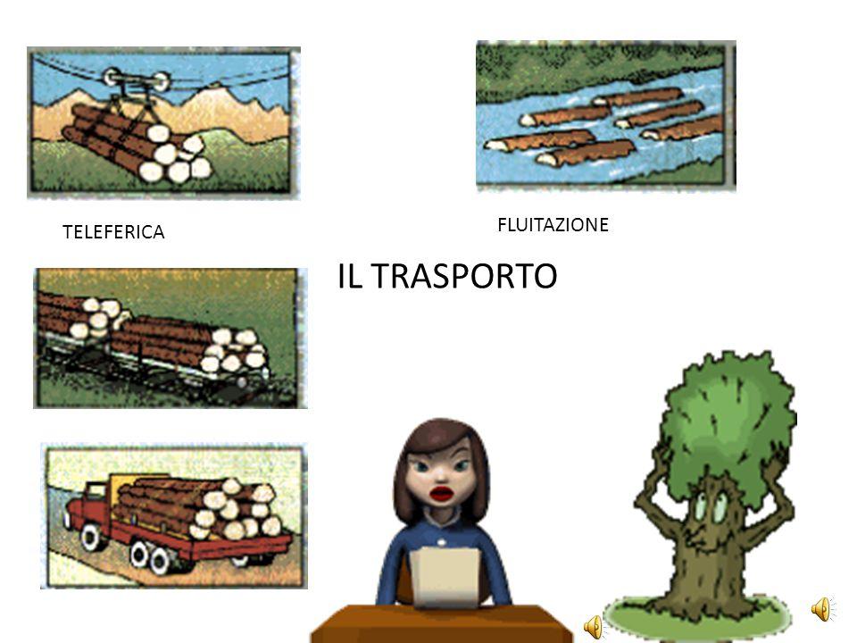 FLUITAZIONE TELEFERICA IL TRASPORTO
