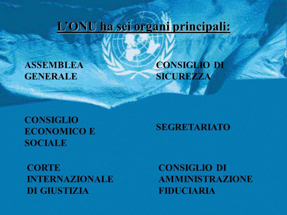 L'ONU ha sei organi principali: