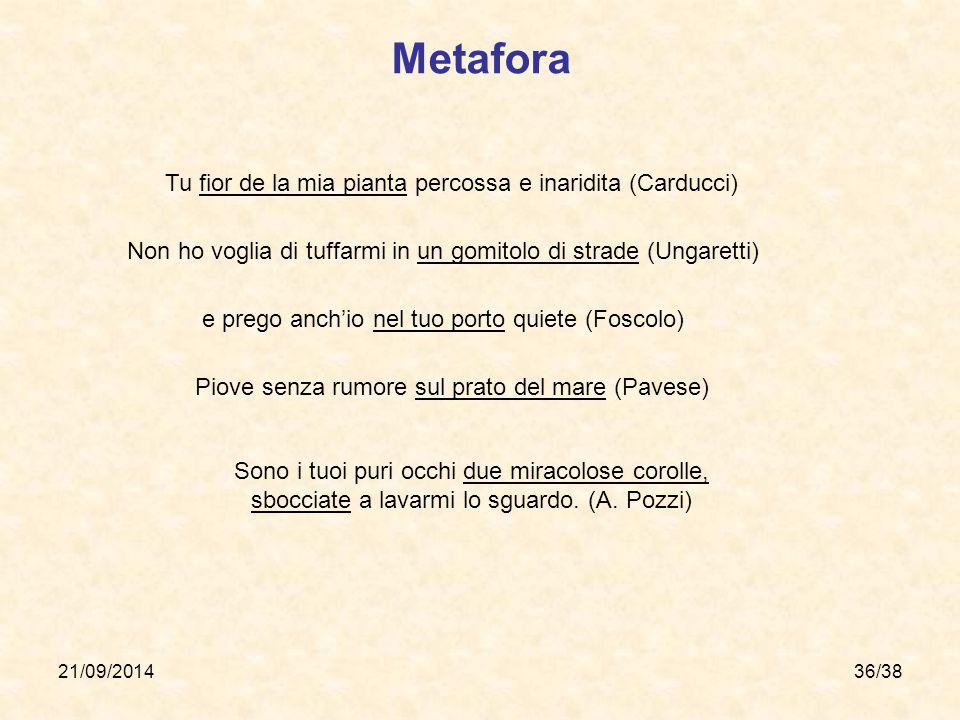 Metafora Tu fior de la mia pianta percossa e inaridita (Carducci)