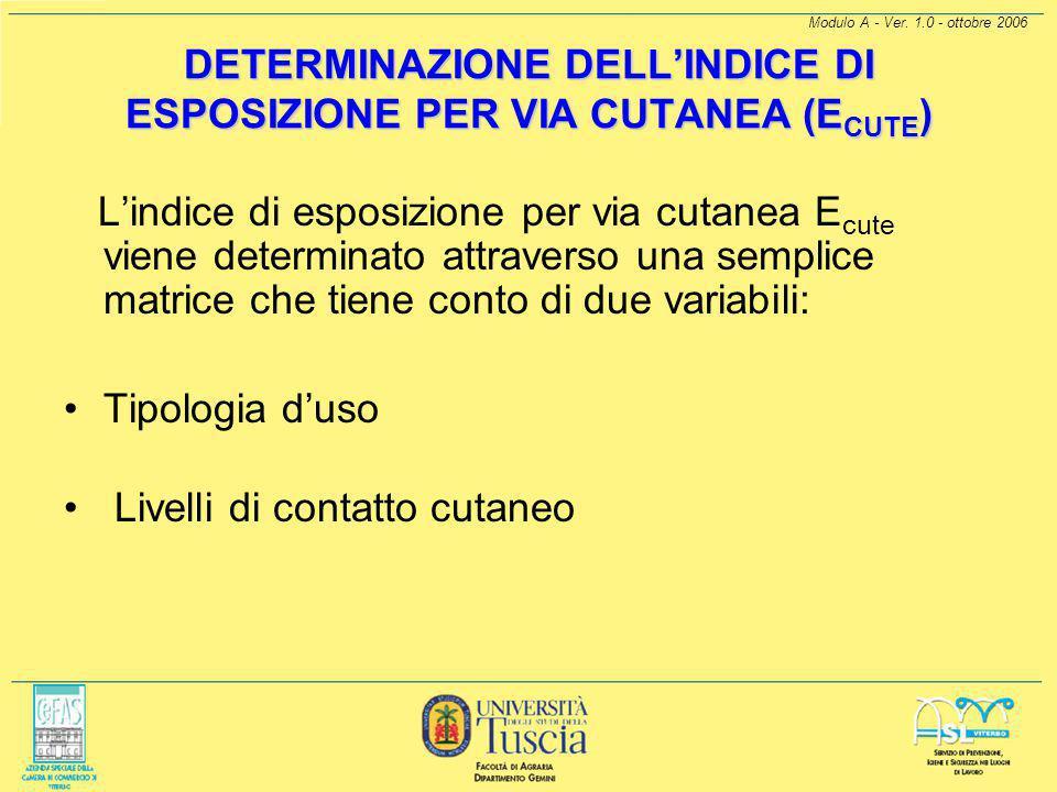 DETERMINAZIONE DELL'INDICE DI ESPOSIZIONE PER VIA CUTANEA (ECUTE)